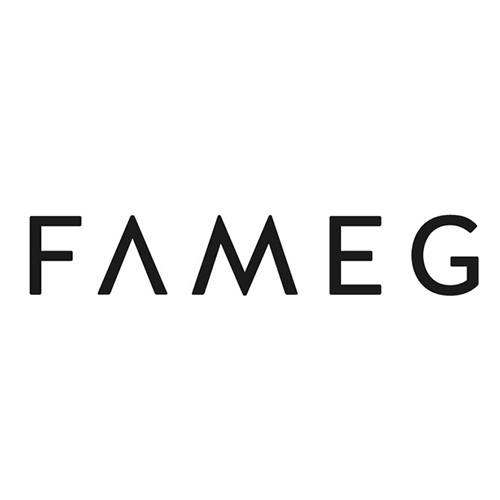 Fameg-logo